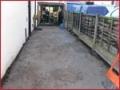 black-bull-lane-01