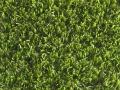 greeneclipse-4