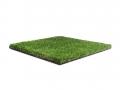 greeneclipse-5