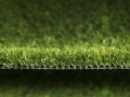 greenfresh-1