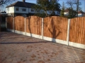fencing1b-large